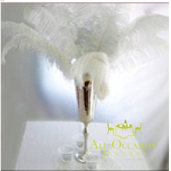 Feathers Centerpieces FCP-100
