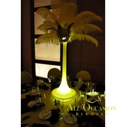 Feathers Centerpieces FCP-18